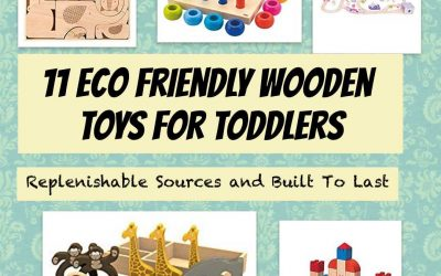 Eco Friendly Wooden Toys for Toddlers – Replenishable Sources and Built To Last