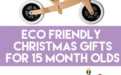 Eco Friendly Gift Ideas for 15 Month Old Baby